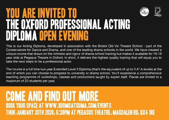 Professional Acting Final Open Evening